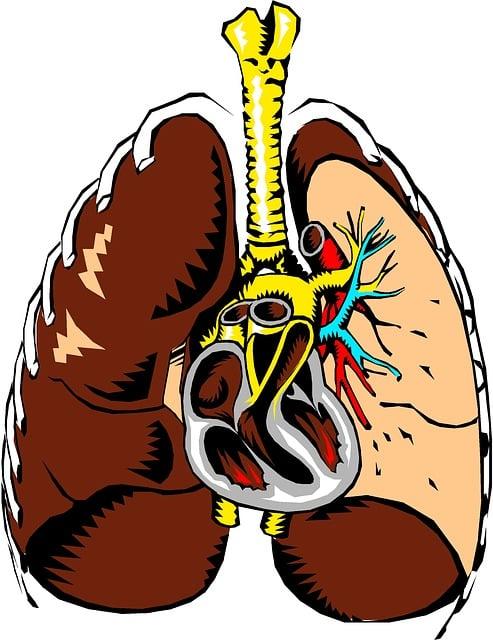 Edemul pulmonar