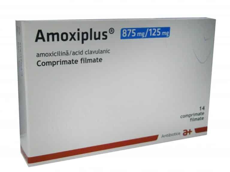 amoxiplus